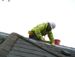 three max fixing the roof